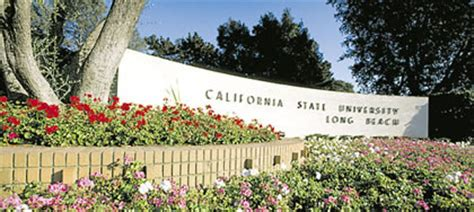 Csulb International Office by Application Process