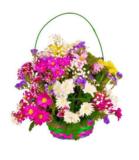 immagini gratis di fiori cesto di fiori immagine gratis domain pictures