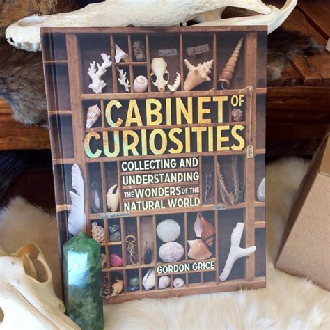 of curiosities book of curiosities book curious nature