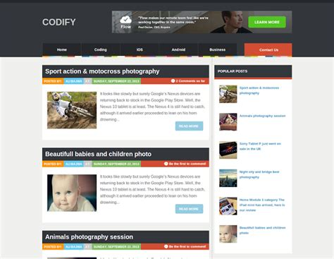 template for blogs professional templates 2014 thatsblogging