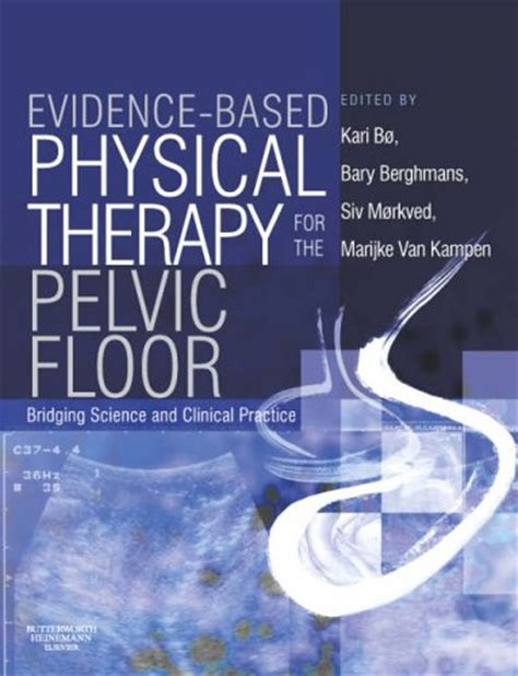 Pelvic Floor Physical Therapist by Pelvic Floor Dysfunction Physical Therapy Pelvic Floor