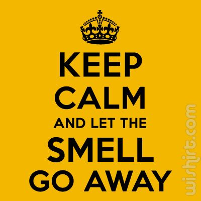 how to make dog smell go away in house how to make smell go away in house 28 images go away