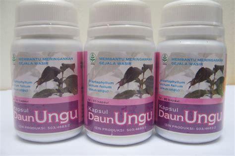 Obat Herbal Wasir Parah mengobati wasir atau ambeien yang parah sehatherba