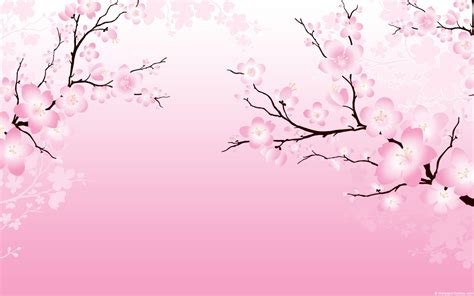 cherry blossom template cherry blossom background powerpoint 171 ppt backgrounds