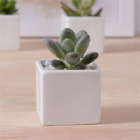 Decorative Ceramic Planters Indoor by Aliexpress Buy Sale Small Indoor Ceramic