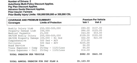 insurance summary template how much auto insurance do you need johnson