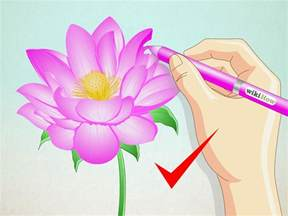 Step By Step Lotus Flower Drawing How To Draw A Lotus Flower 7 Steps With Pictures Wikihow