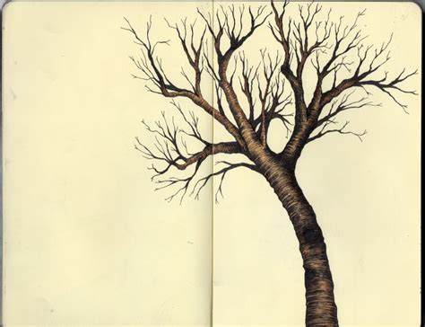 drawings of tree achromatic color spectrum drawings