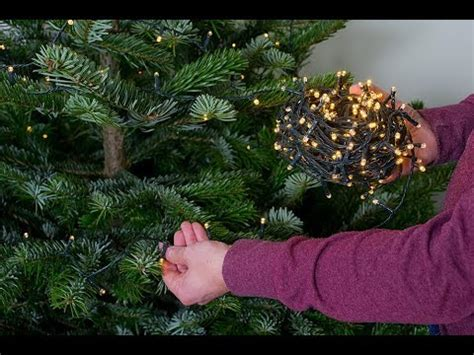 how to set up the perfect real christmas tree youtube