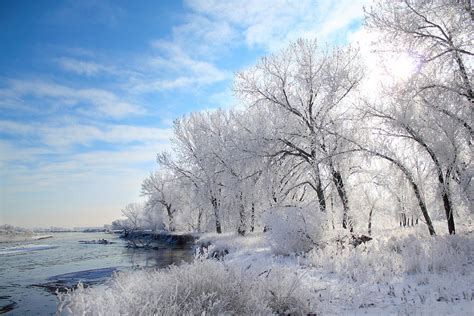 Home Decor App cold frosty morning photograph by shane bechler