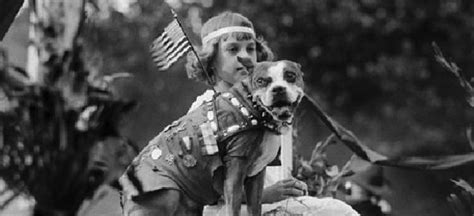 Sergeant Stubby Pitbull 17 Best Images About Sgt Stubby On World War I Trench And The Journey
