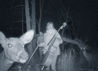 my trail cam captured a child playing with a coyote at 3am