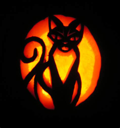jack o lantern templates cat friday fun cat jack o lanterns pet project