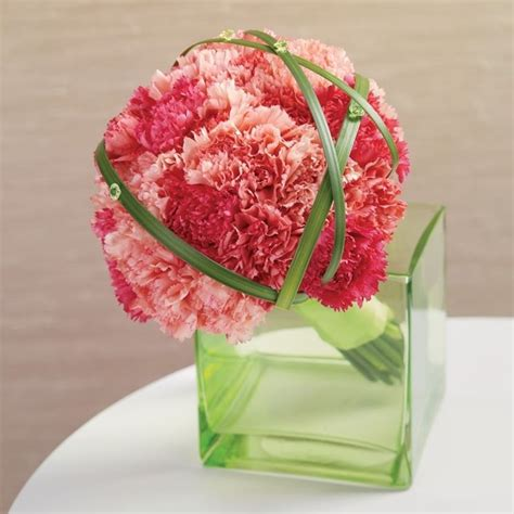 conoscere i fiori linguaggio fiori significato fiori conoscere il