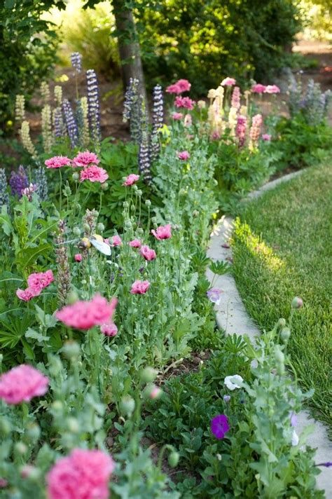 cottage garden flowers cottage garden flower mix garden design ideas