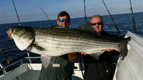 oc boat rentals mssa fall classic day 1 big ol rockfish ocean city md
