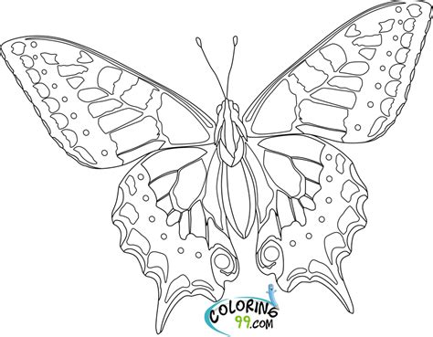 Butterfly Coloring Pages Team Colors Butterfly Coloring Page