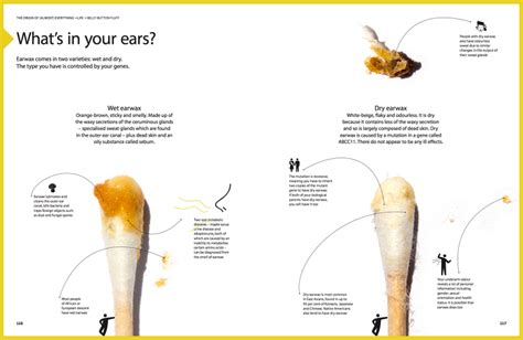 what color should earwax be the origin of almost everything gleamsocial