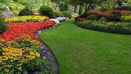 Waitrose Flower Garden Gardening