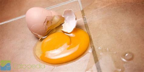 cara membuat telur asin agar tidak amis cara membersihkan telur yang pecah di lantai madina