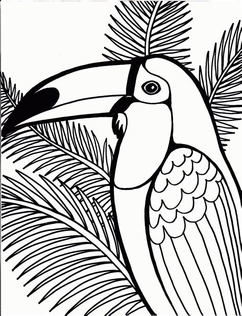 parrot coloring page bird coloring pages coloring ville