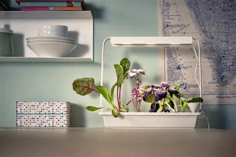 zelf groente kweken met ikeas indoor moestuin eetblognl