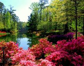 most beautiful gardens most beautiful gardens beautiful scenery photography