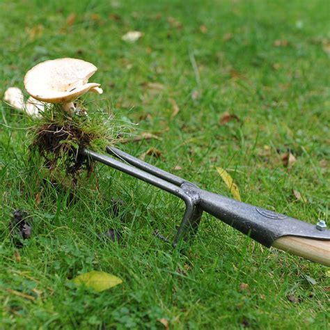 garden weeding bench buy de wit weeding fork delivery by waitrose garden in association with crocus