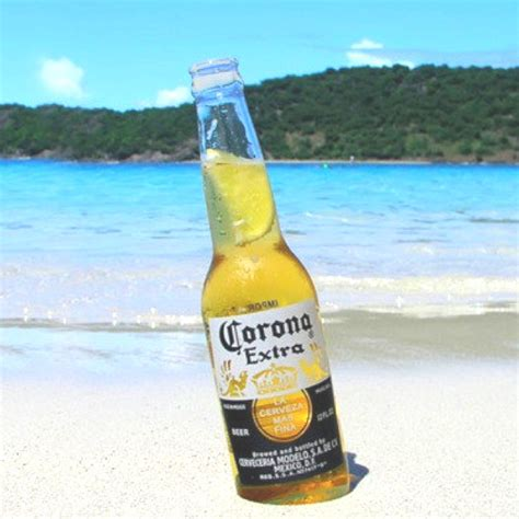 corona light vs extra 17 best images about corona on pinterest beer poster