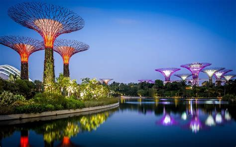 Singapore Gardens By The Bay - singapore flyer gardens by the bay saver pass hippo