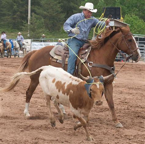 Mibil Rodeo rodeo soullenz