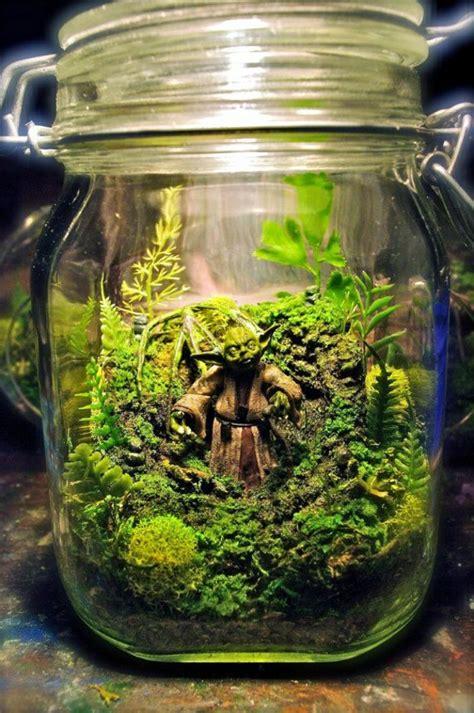 Minigarten Im Glas