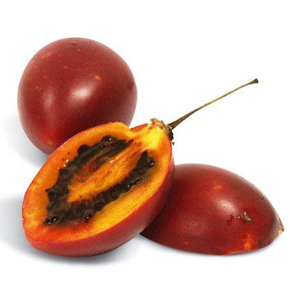94 fruit with seeds tamarillo or tree tomato