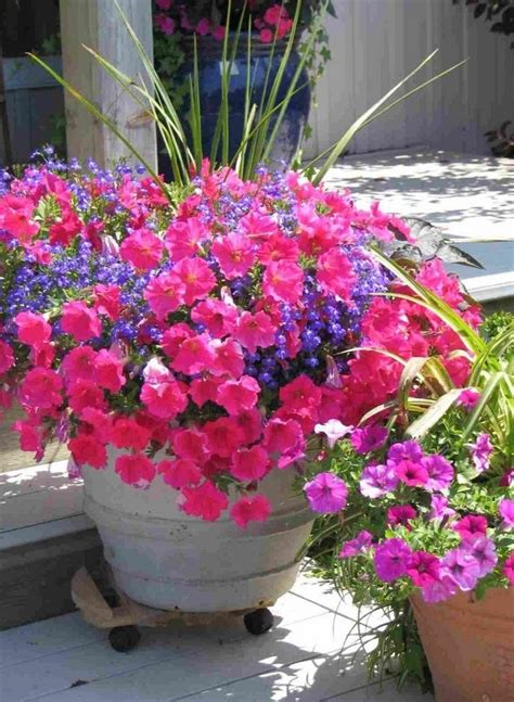 large container gardening ideas large flower container ideas flower idea