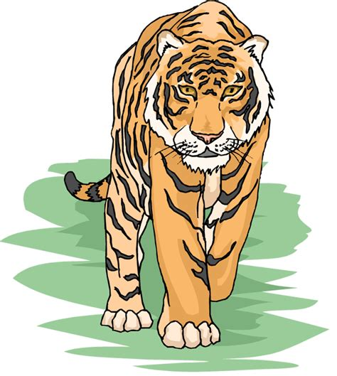 clip tiger free tiger clipart