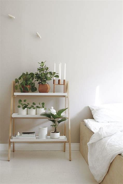 ideas of including indoor plant shelves in your home s