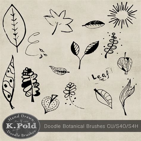 doodle photoshop botanical doodle photoshop brushes photoshop brushes