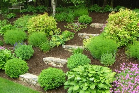 giardino semplice giardino idee originali per un paesaggio da sogno