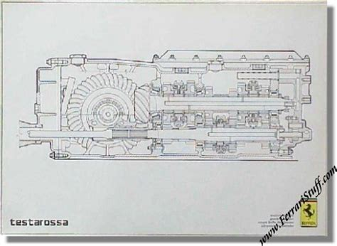 testarossa wiring diagram 28 images search results