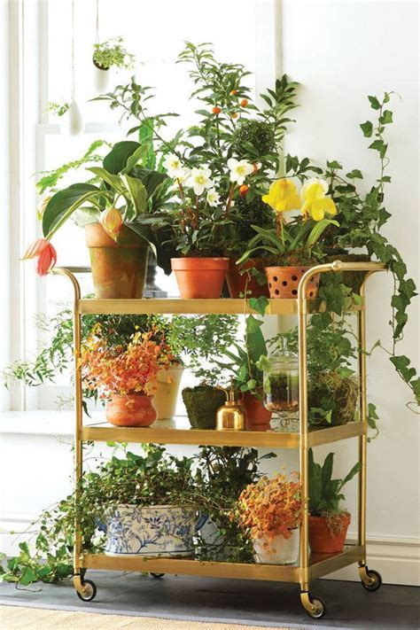 awesomely creative ways    bar cart plants
