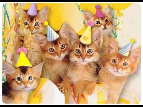 Feliz Aniversário, Meow!   YouTube