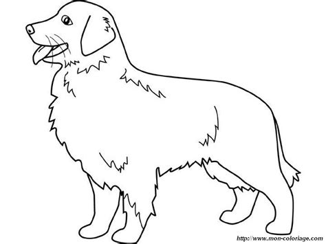 Golden Retriever Coloring Page golden retriever puppy coloring pages coloring pages
