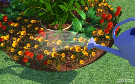 How To Plant A Flower Garden Step By Step How To Start A Flower Garden 9 Steps With Pictures Wikihow