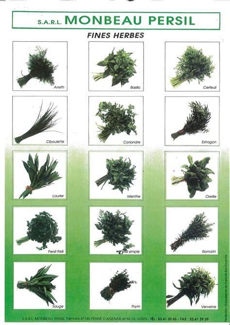 Herbes Aromatiques Cuisine Liste by Liste Herbes Aromatiques Fleur De
