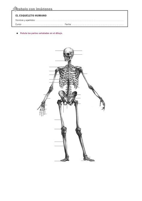 RECURSOS PRIMARIA | Láminas mudas del cuerpo humano ~ La
