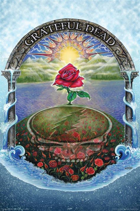 discounted nmr  grateful dead rose decorative poster