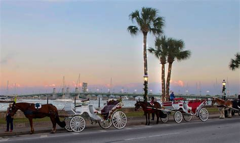 st augustine of lights carriage tour wine and dine in st augustine this season visit