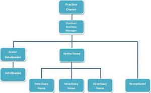 designing the perfect organisational chart for your
