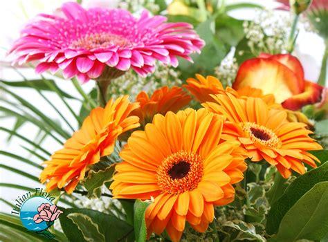 fiori gerbere compra o spedici a domicilio bouquet di gerbere