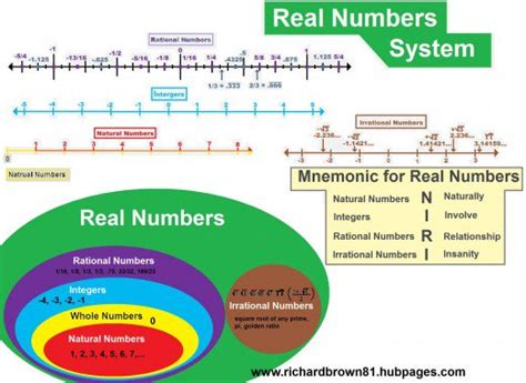 diagram of a real number system real numbers curious concepts precalculus 1 1